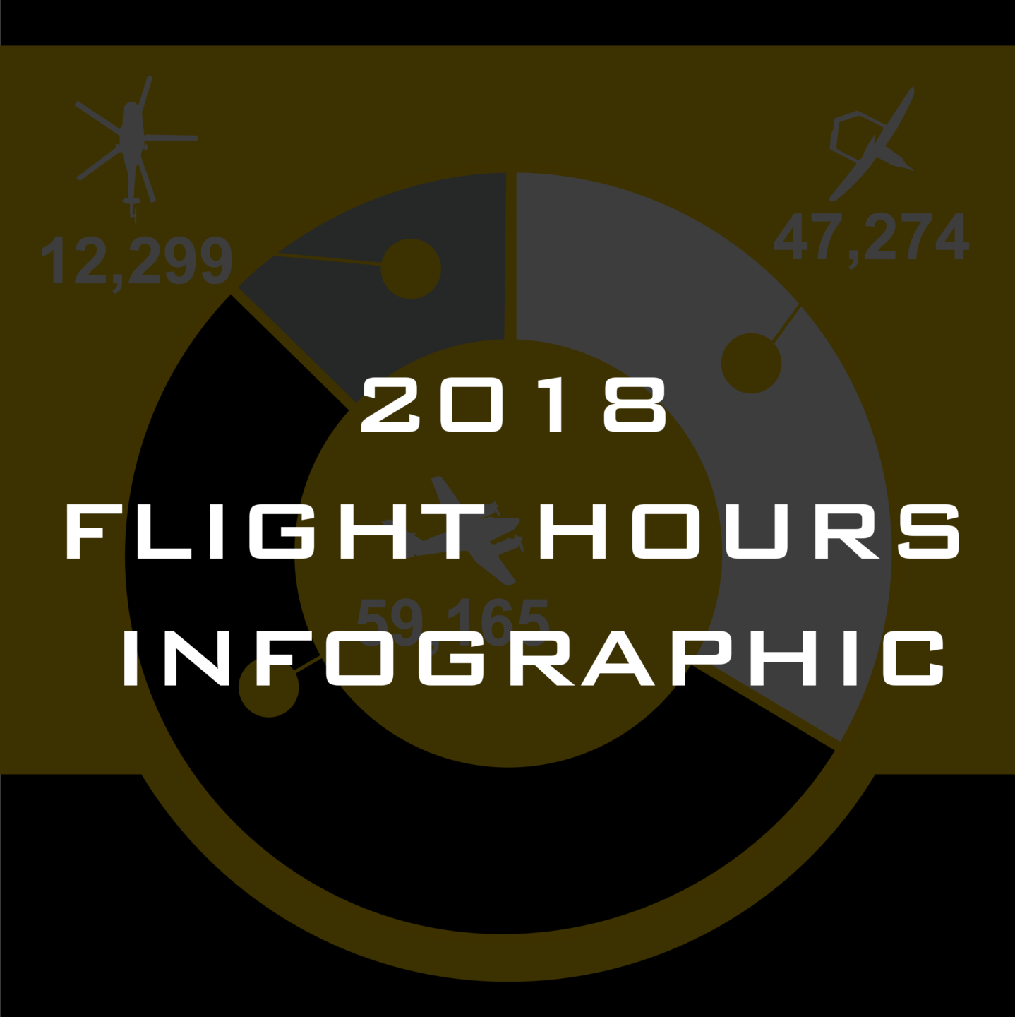 2018 Flight Hours Infographic